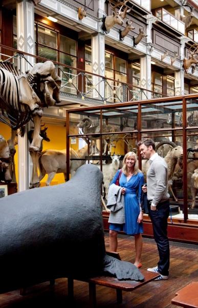 blog natural history museum