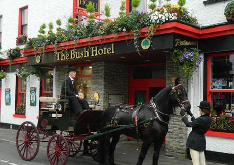 bush hotel