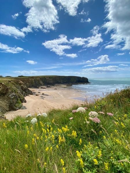 wexford coastline
