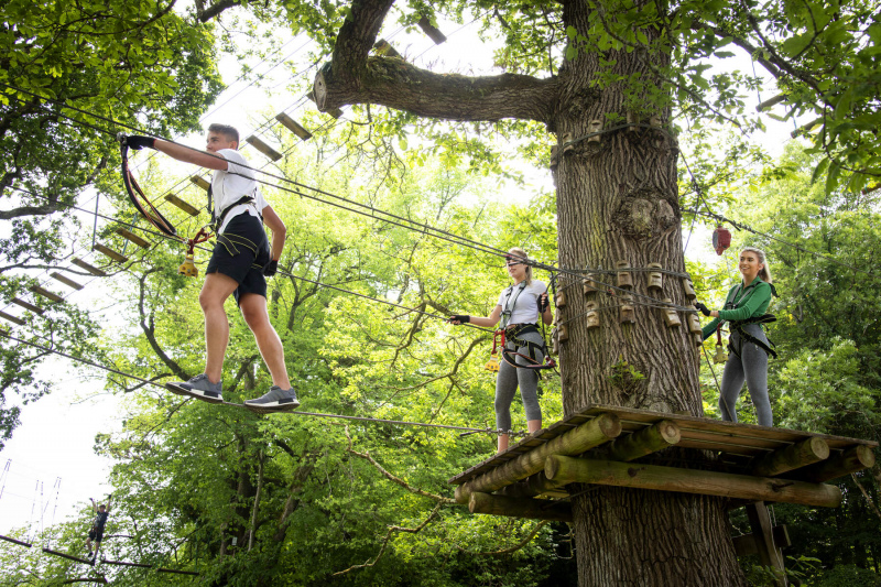 zipit forest adventures at lough key forest activity park boyle co roscommon web size